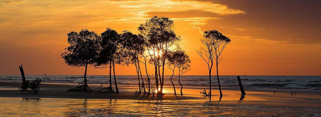 5 Days 4 Nights Darwin Wanderlust Australia holiday package from Singapore