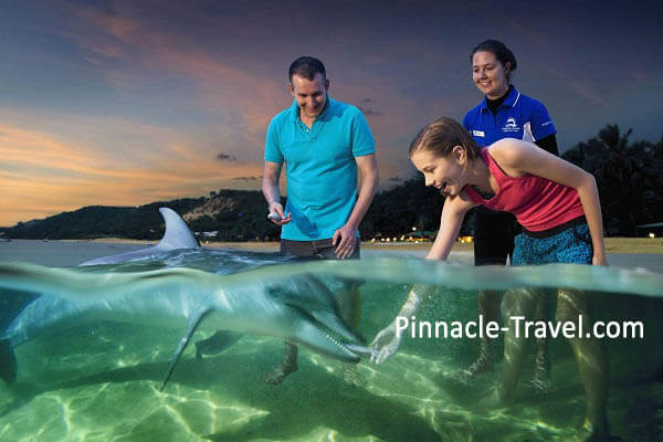 Australia Gold Coast | Tangalooma Island Dolphin Feeding | 6 Days 5 Nights Gold Coast 2 Worlds, Tangalooma Dolphin + Desert Safari Australia holiday package from Singapore