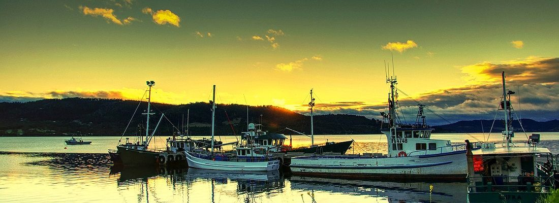 4 Days 3 Nights Hobart Flexi Delight Tour Australia holiday package from Singapore