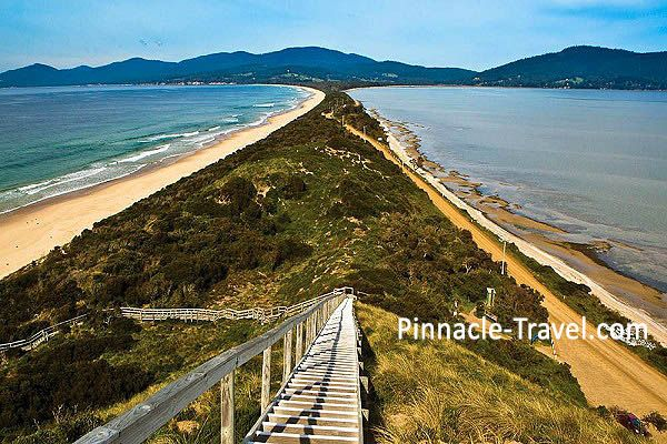 Australia Tasmania | Bruny Island | Tasmania Devil | 6 Days 5 Nights Hobart + Launceston Combo Tour Australia holiday package from Singapore