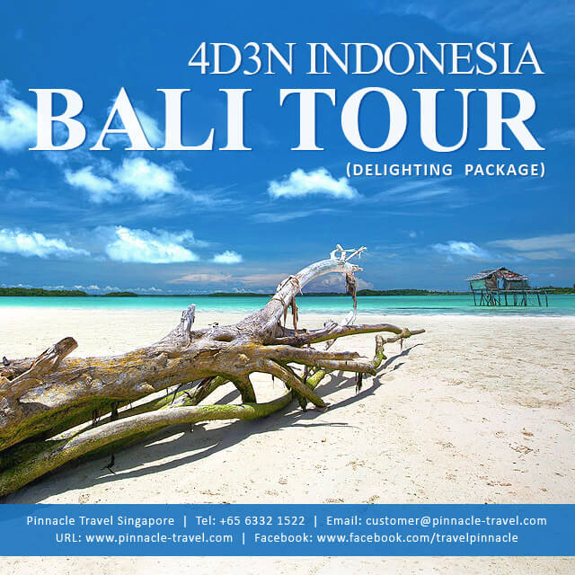 4 Days 3 Nights Bali Indonesia Holiday Tour Package from Singapore Delighting Package