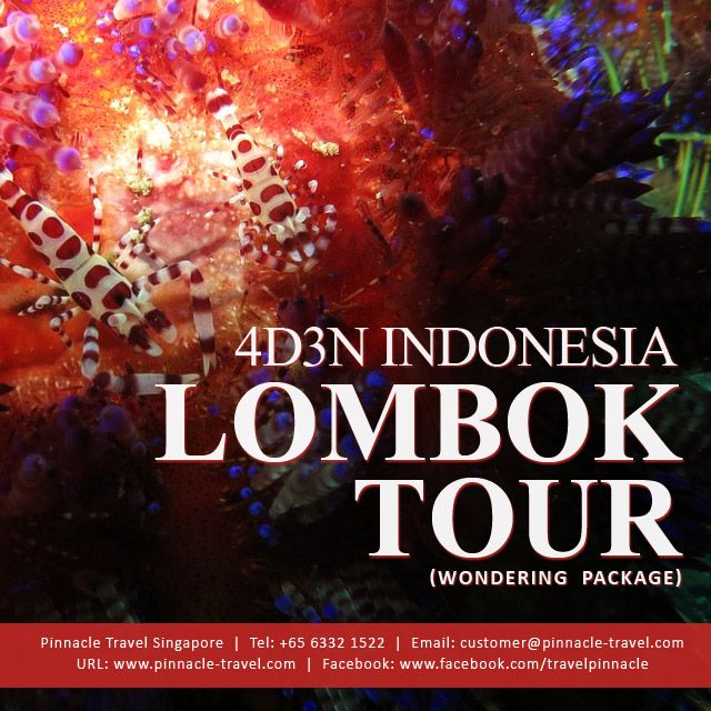 4 Days 3 Nights Lombok Indonesia Holiday Tour Package from Singapore Wondering Package