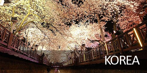 Korea Holiday Tour Package